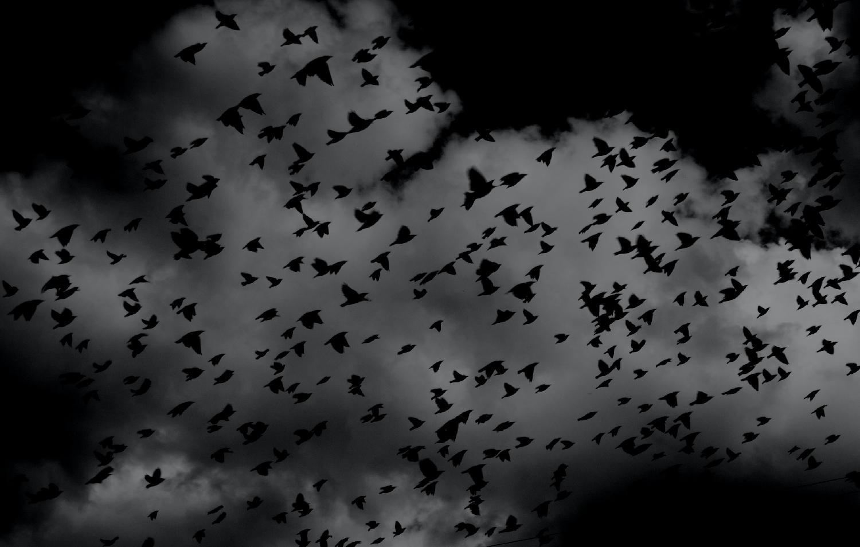 Co znamenají noční můry? A proč jsou některé z nich tak znepokojující?